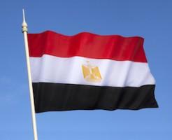 エジプト大使館の求人