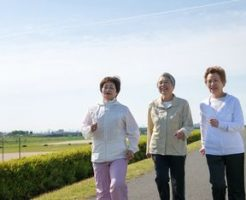 日本の介護業界は、各国大使館からの注目の的?